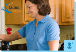 Domestic Cleaners Ealing