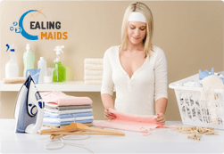Domestic Cleaners W5