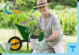 Gardening Services Ealing