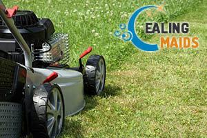 Lawn Care Ealing