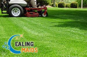 Lawn Mowing Ealing