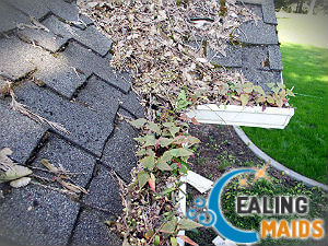 cleaning-gutter-ealing